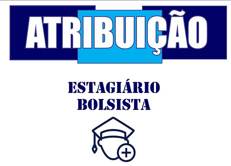 5ª SESSÃO DE ATRIBUIÇÃO BOLSISTA ESTAGIÁRIO