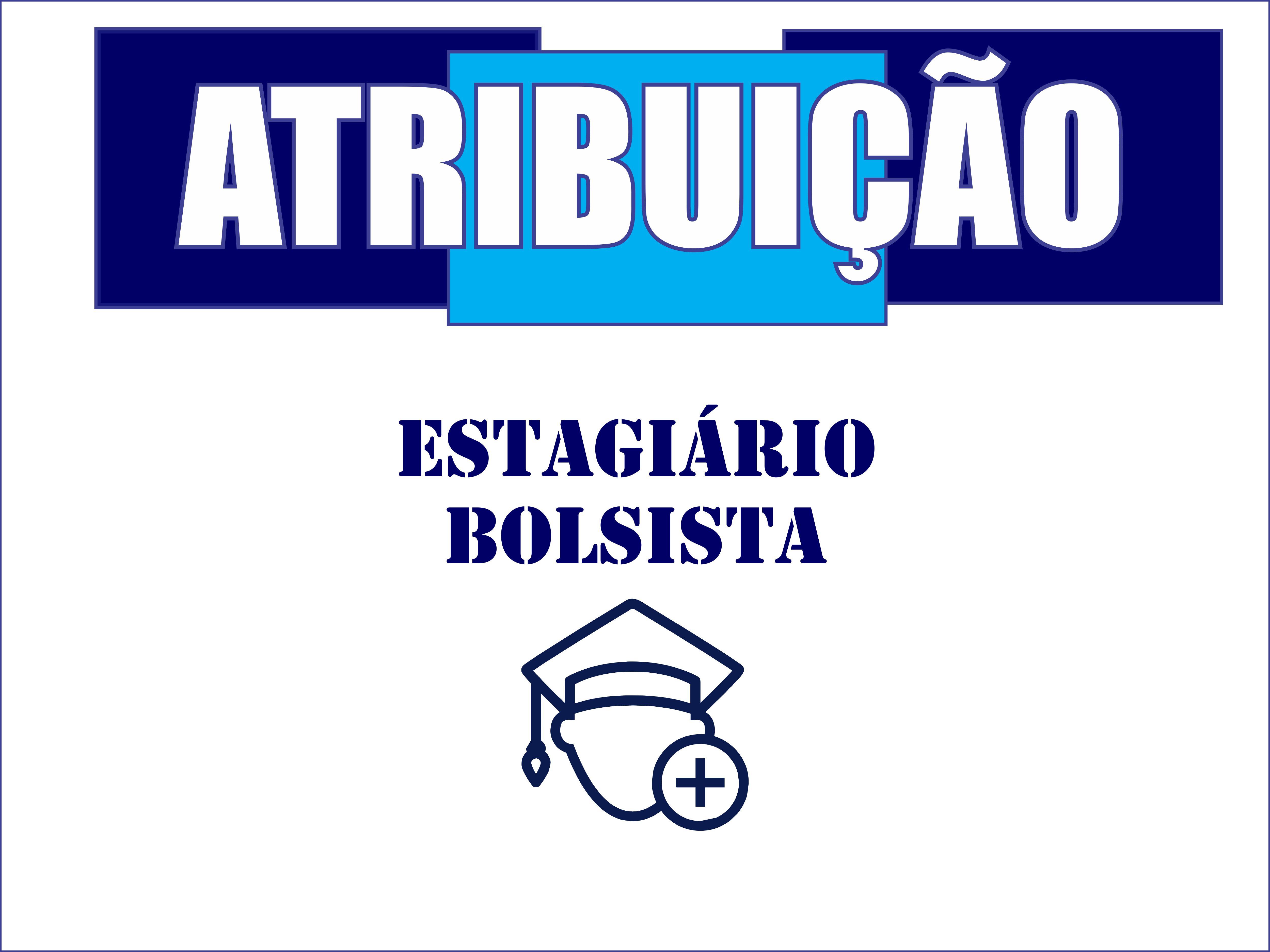3ª  SESSÃO DE ATRIBUIÇÃO BOLSISTA ESTAGIÁRIO