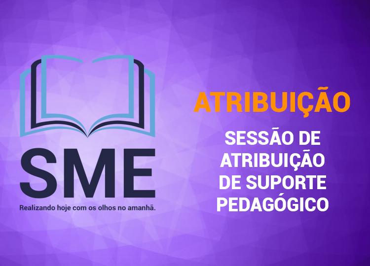 Sessão de atribuição de suporte pedagógico nº 04/2020