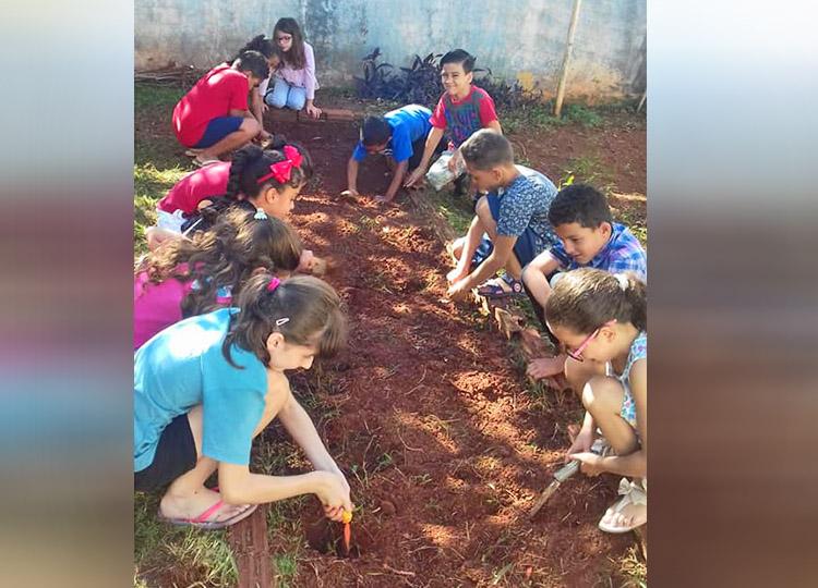 Meio ambiente é tema de projeto na escola João de Castro
