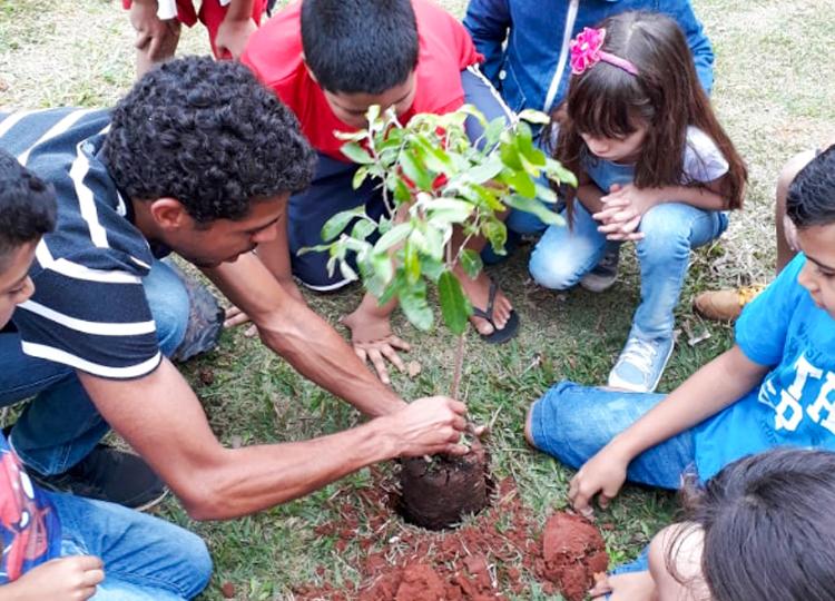 Plantio de mudas encerra atividades alusivas ao Meio Ambiente na escola Coraly